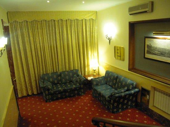 Hotel Napoleon: Salone 5