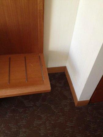 Sheraton Suites Tampa Airport Westshore : dust in corner in bedroom