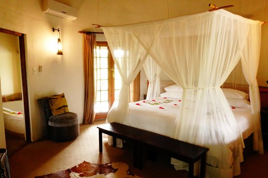 Motswari Private Game Reserve: Bed