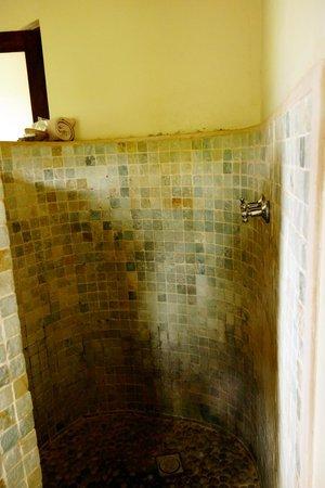 Motswari Private Game Reserve: Shower