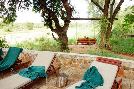 Motswari Private Game Reserve: Pool view