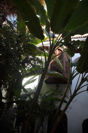 Riad Dar El Aila - Il balconcino