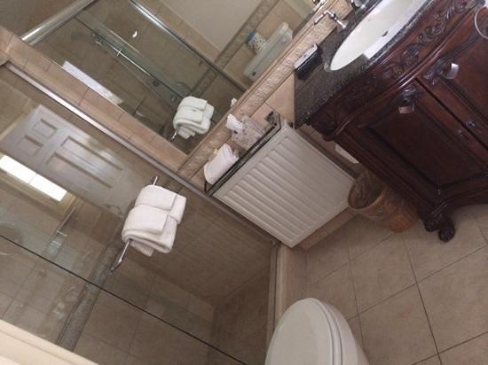 Devonfield Inn: roosevelt suite