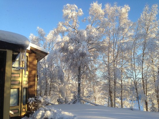 Alaska Fishing Lodge - Soldotna Bed and Breakfast Lodge : Winter scenery from Guest Room