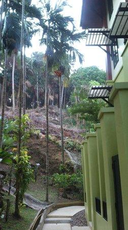Phulin Resort: Задняя часть отеля
