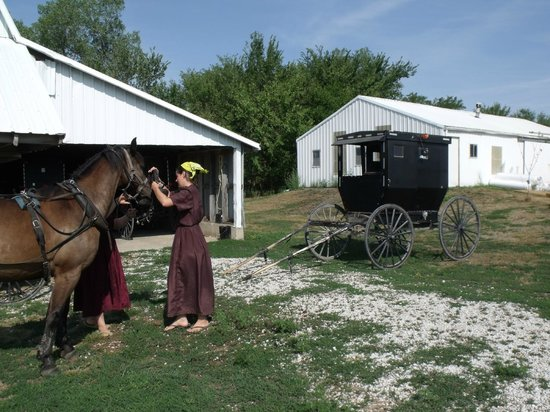 Arbor House Country Inn: Graber Farm Tour is popular tourist attraction.
