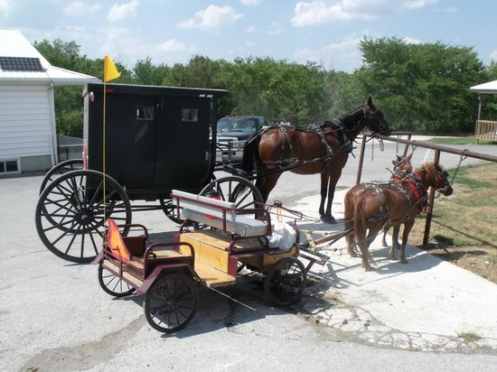 Arbor House Country Inn: Enjoy the quaint Amish culture and unique photo opportunities.