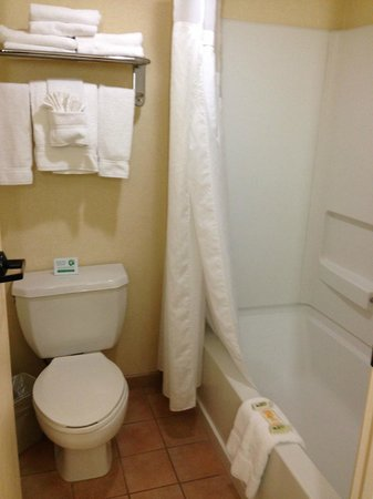 Holiday Inn Hotel & Suites Anaheim (1 BLK/Disneyland): Standard style bathroom
