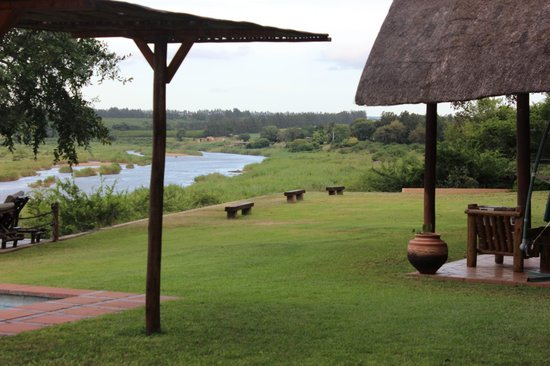 Buckler's Africa : view from the backyard