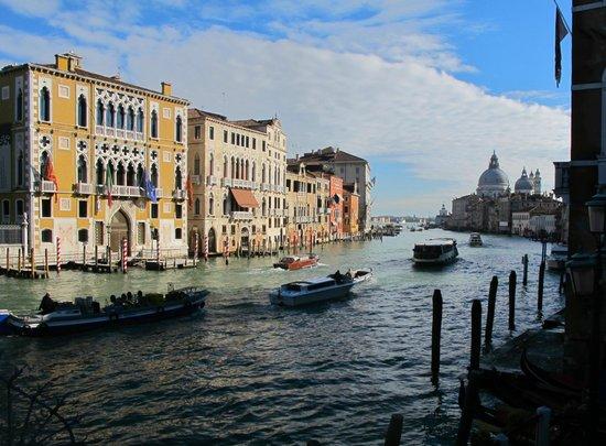 Venice with A Guide: quel est le palazzo à gauche? le conservatoire? et l'église neo classique au fond , la Salute? .