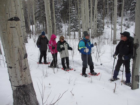 Outspire Hiking and Snowshoeing : Beautiful snowshoe trip in Feb '14