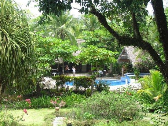 Karahe Beach Hotel : jardines