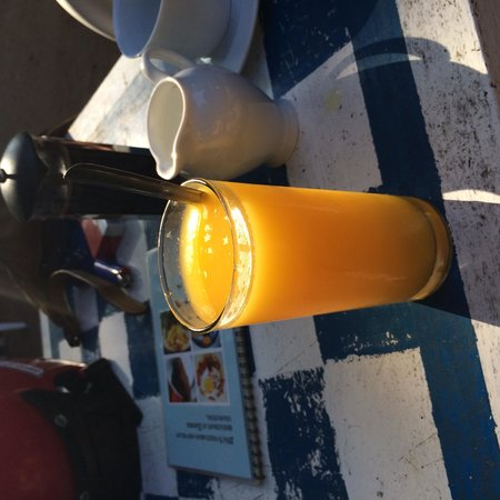 Jina's Vegetarian and Vegan Restaurant: Passion fruit juice drank with the company of the monkeys :-)