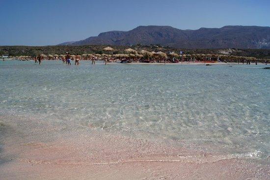 Strand von Elafonissi: pink sand