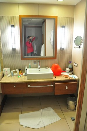 Hilton Dalaman Sarigerme Resort & Spa: great bathroom