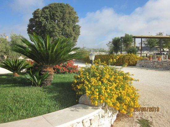 Artemisia Resort : Esplosione di fiori