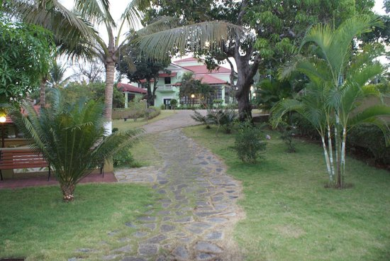 Devaaya Ayurveda & Nature cure Centre: one of the many paths through the garden