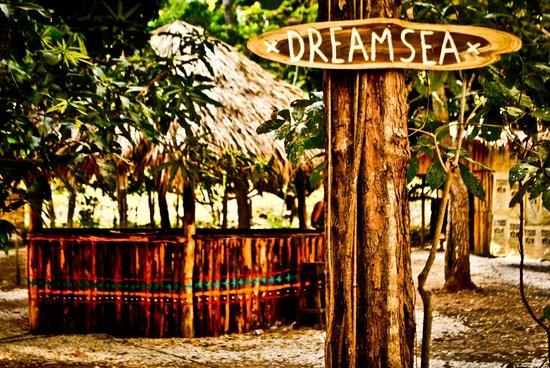 Costa Rica Surf Club: ENTRADA