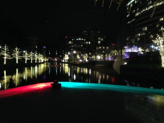 The Woodlands Waterway Marriott Hotel & Convention Center: Waterway Cruiser - night