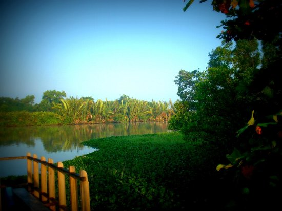 Back of Beyond - Kahandamodara: Roof Top Veiw