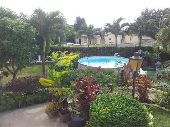 Palm Paradise Guest House + 2 Apartments: Lush garden & pool