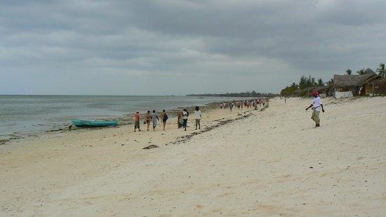 Aquarius Club: Spiaggia