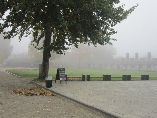 Museo Estatal Auschwitz-Birkenau: 08:00 туманное октябрьское утро