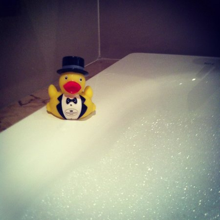 Europa Hotel - Belfast : Hastings duck and a fab bubble bath !!
