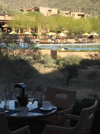 The Ritz-Carlton, Dove Mountain: pool view