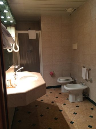 Residenza delle Citta: rest room is big, no shower tub