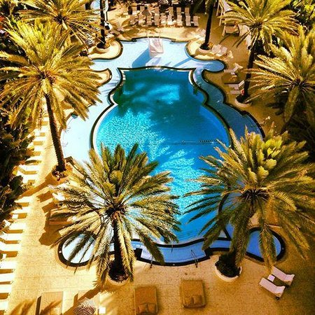 The Raleigh Miami Beach: View from the Penthouse on the World Famous Raleigh Pool