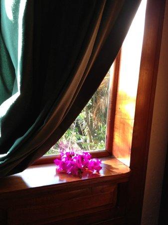 Hotel Posada Canal Grande : finestra sul giardino