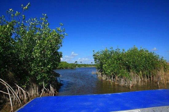 Wooten's Everglades Airboat Tour: Open water