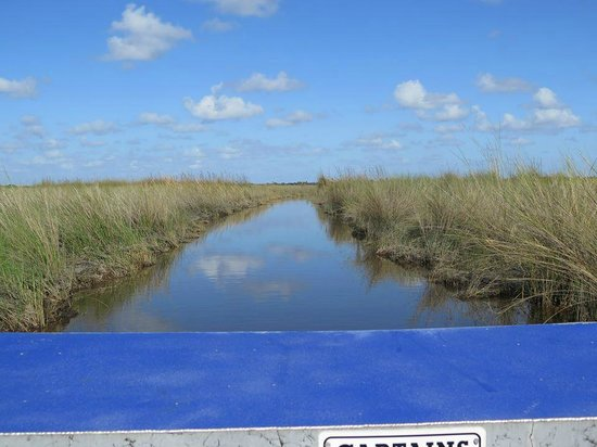 Wooten's Everglades Airboat Tour: Beautiful
