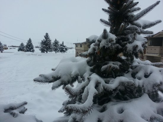 The Inn at Tomichi Village : Let it snow!!!