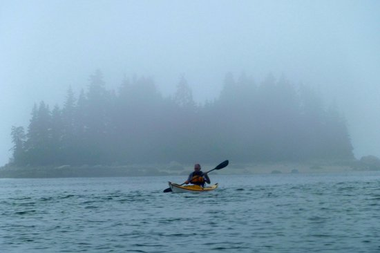 Driftwood Kayak: Sellers Island, Brooklin