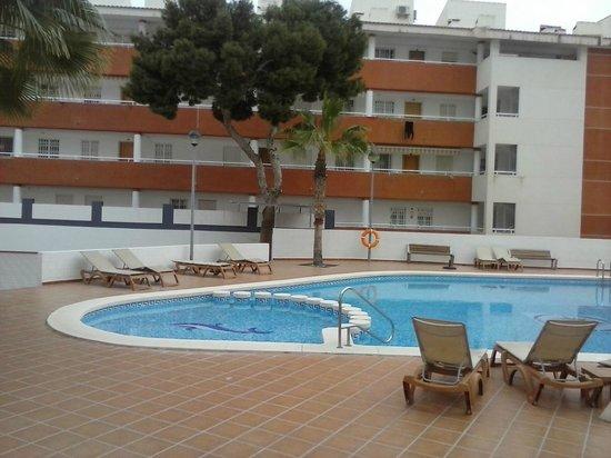 Hotel La Familia Gallo Rojo: Piscina y recinto