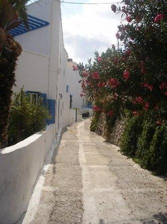 Sideris Sunflower Villa : street