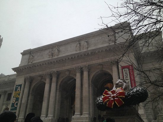 New York Public Library : Snowy Holiday Library.