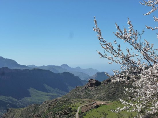 Bohemia Suites & Spa: På tur i bjergene