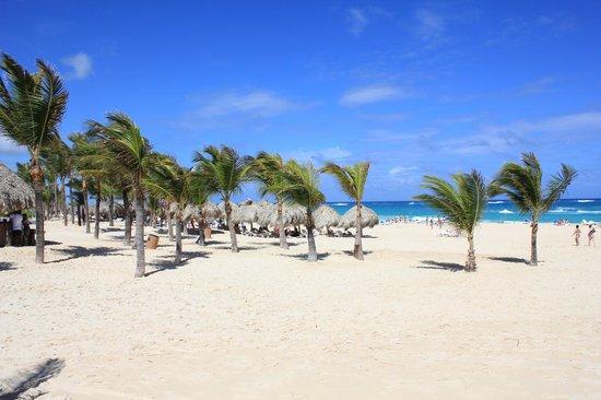 Hard Rock Hotel & Casino Punta Cana: Praia do Hotel