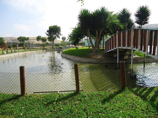 Hotel Qia Ecolodge: LAGUNA DE PATOS