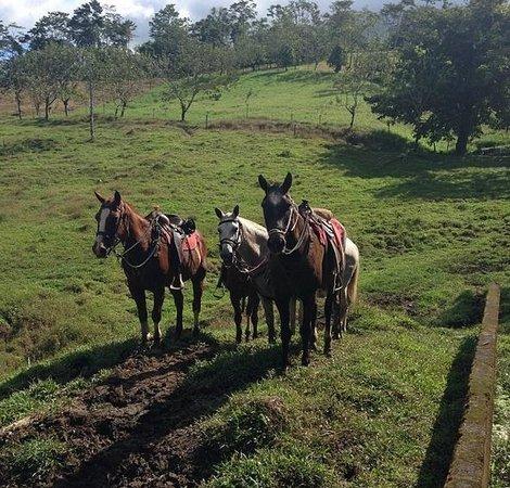 Cabalgata Don Tobias: Taking a break while riding with Don Tobias