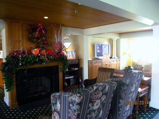 Meadowmere Resort: Sitting room by the main reception with tv, books, fireplace.