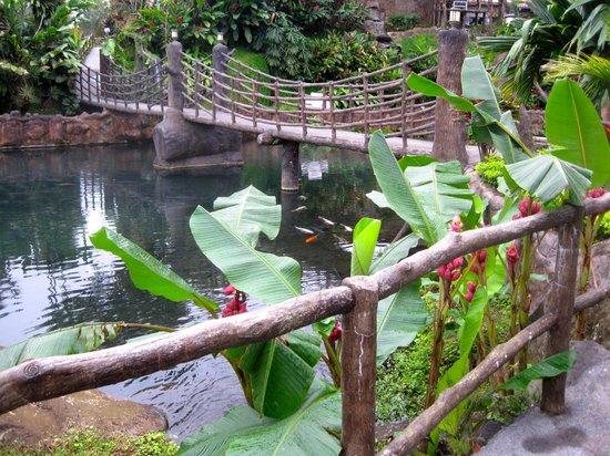 Los Lagos Hotel Spa & Resort: a pool with a bridge