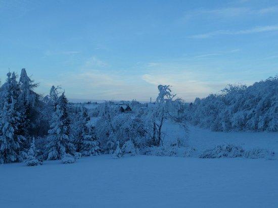 Riedelmühle: Winterlandschaft