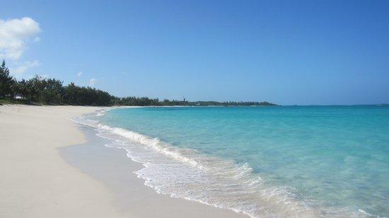 Paradise Bay Bahamas : Plage  PARADISIAQUE
