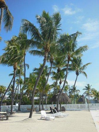 Drop Anchor Resort : Beach Area