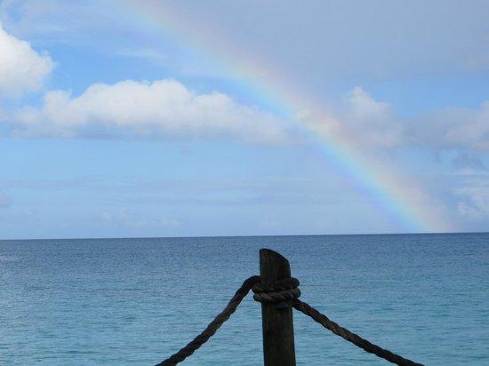 Galley Bay Resort: Rainbow after a brief rain (aka liquid sunshine)