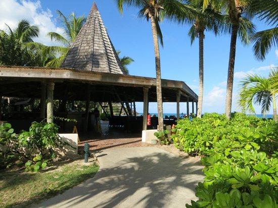 Galley Bay Resort: Teepee Bar
